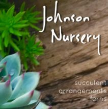 Johnson Nursery