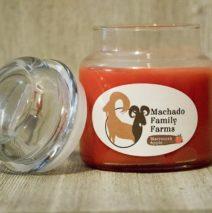 Machado Family Farm