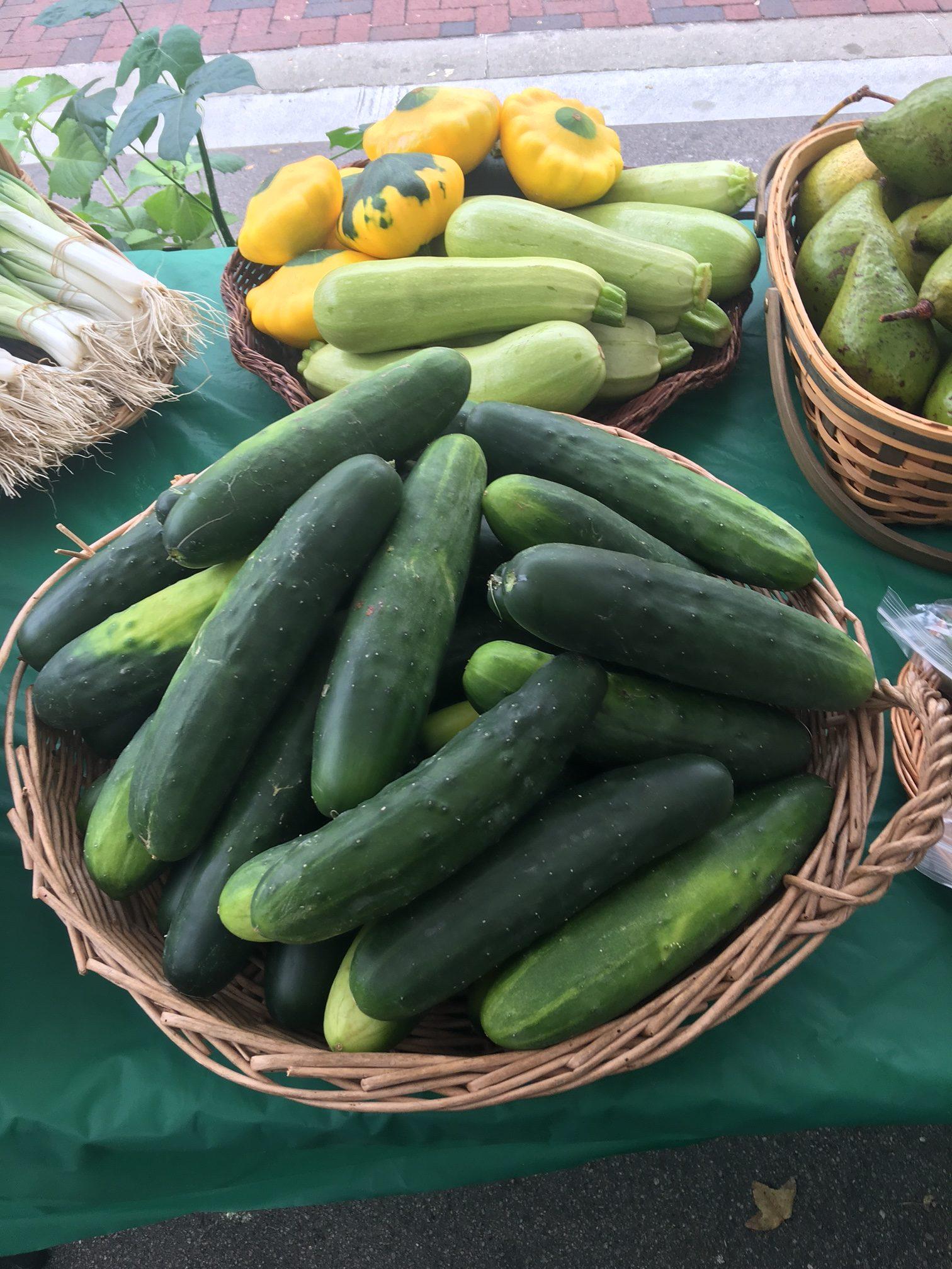 Eco Farm | Lakeland Downtown Farmers Curb Market