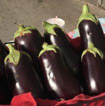 Produce Picks for April 15