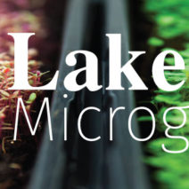 Lakeland Microgreens