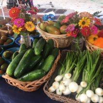 Produce Picks for November 17th