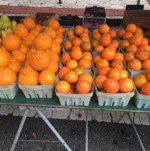 Produce Picks for December 22nd