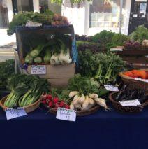 Produce Picks for December 7