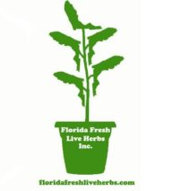 Florida Fresh Live Herbs